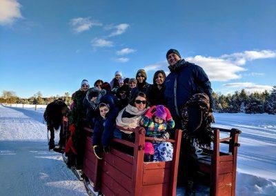 horse drawn sleigh rides 5